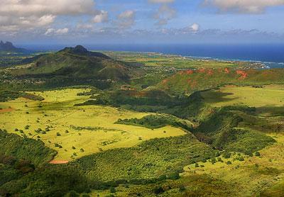 green_hawai.jpg