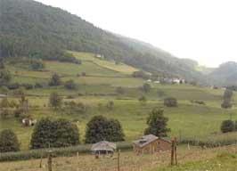 occ_asturias